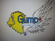 Gump+ Volleyball Team