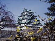 名古屋市政を考える会