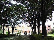 成蹊大学 中神ゼミ