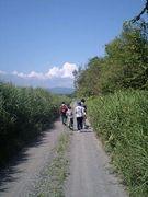 自然塾テント村