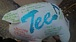 TEE family〜関東〜