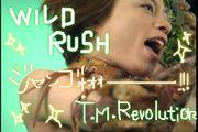 ☆WILD RUSH☆