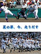 野球 指導者・コーチ