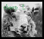 sheep L