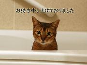 笑フ門ニハ福キタレー!!