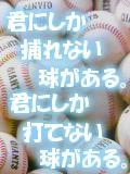 東京で草野球がやりたい