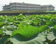 北鳴中学校
