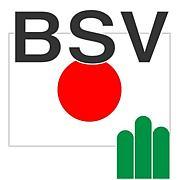 BSV(ボーイスカウト)