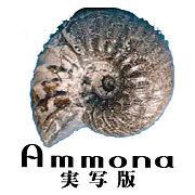 裏Ammona