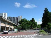 東北大理学部物理(H16入)