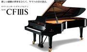 ピアノ一筋!!