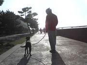 浜寺公園K9