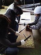 竹でマイ箸作り!