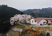 大附分校(埼玉県旧都幾川村)