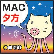 夕方MACチーム