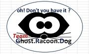Team Ghost Racoon Dog