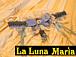 La Luna Maria (ルナマリア)