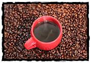 ノーコーヒー!ノーライフ!