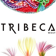 hair salon TRIBECA west