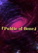 SF小説『Public of  Born』
