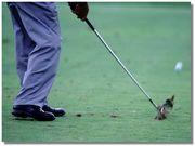 熊本でゴルフ!