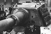 VI号戦車/ティーガー一族