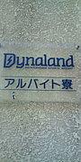 Dynaland 2010-2011