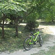 E.C.C. 遠州サイクリングクラブ