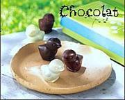 親子英会話教室 〜chocolat〜