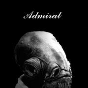 ADMIRAL ACKBAR (アクバー提督)