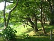 愛知県 秘密の癒しスポット