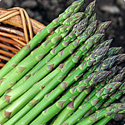 青森県での農業〜家庭菜園