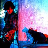 黒猫とベンジー