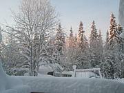 Swedish Lapland -GELLIVARE-