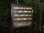 I Love 樹海(´∀`)