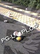 PG−LOPLOP