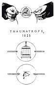 ソーマトロープ