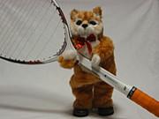 ソフトテニスやりたい!稲沢付近