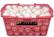長崎市立西浦上中ソフトテニス部