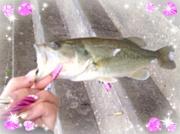 釣りGAL's★*