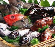 エブリディ鮮魚。