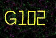 G102(´∀`)