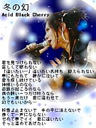 AcidBlackCherry「BLACK LIST」