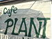 CAFE  PLANT