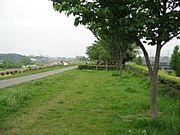 川崎多摩川ジョギングクラブ