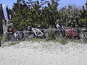 鳥取市の自転車乗り