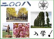2008年度 北海道大学入学生