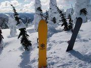 egf snowboard