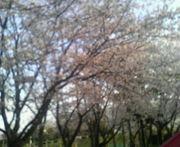 ★春夏秋冬★