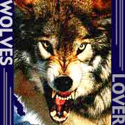 wolves†狼†lover